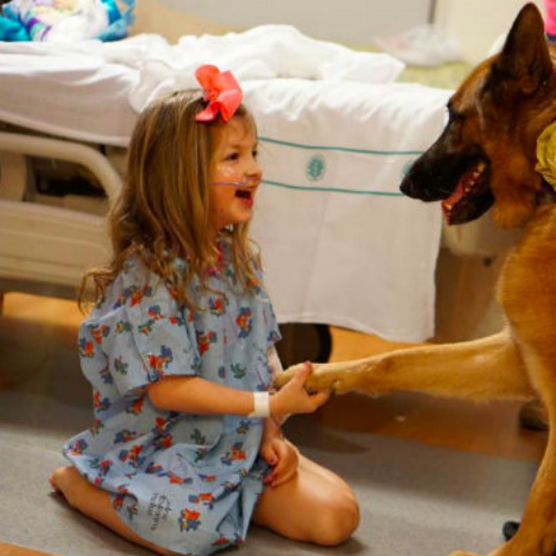 Hospital patient and therapy dog.