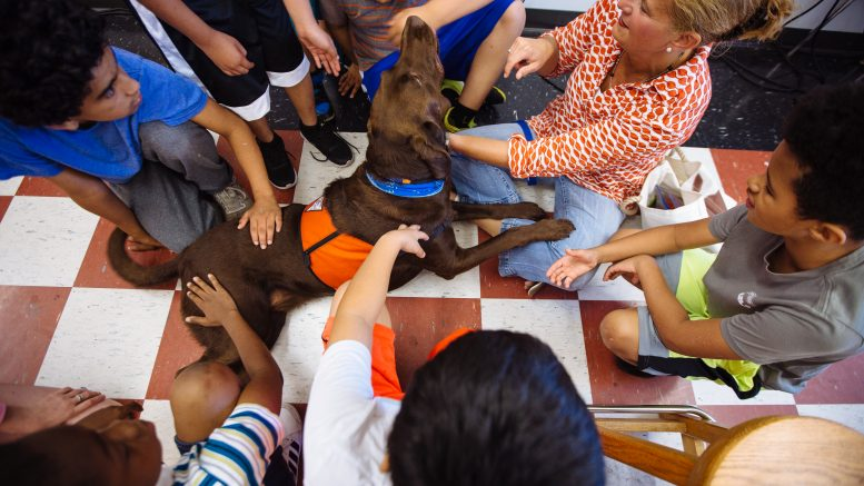 How Owning A Dog Can Help Students