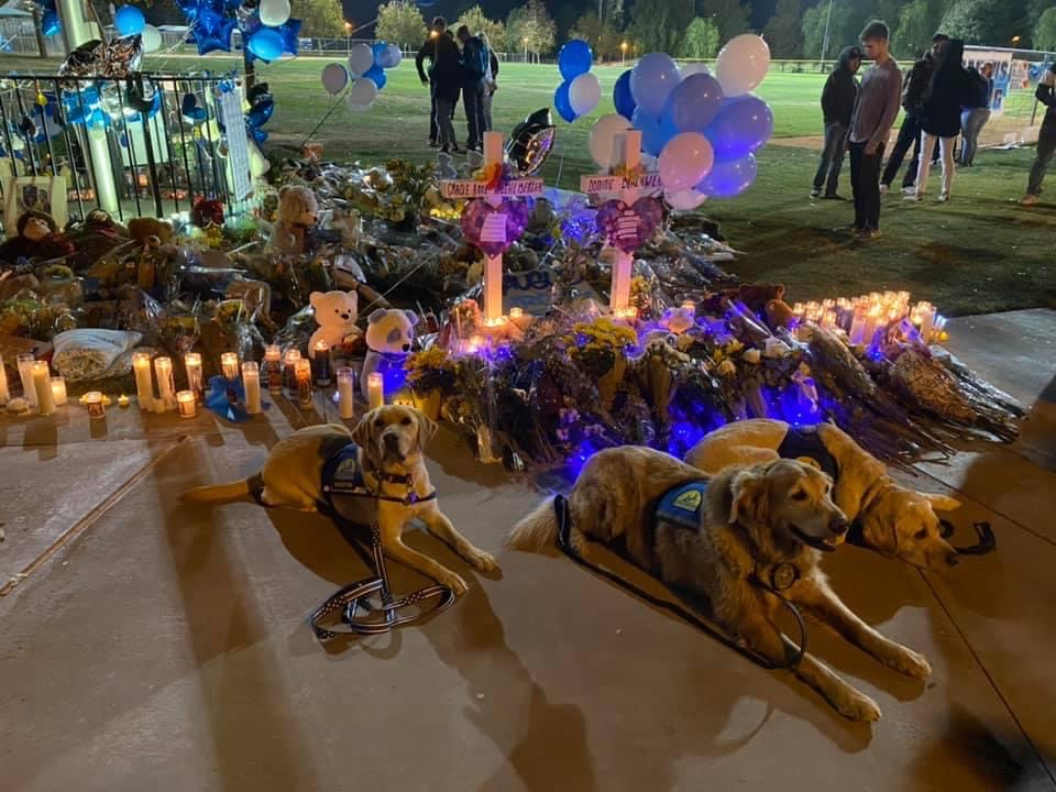 Nubbin and some fellow K-9 companions gather at Saugus High Schools candlelight vigil to comfort attendees.