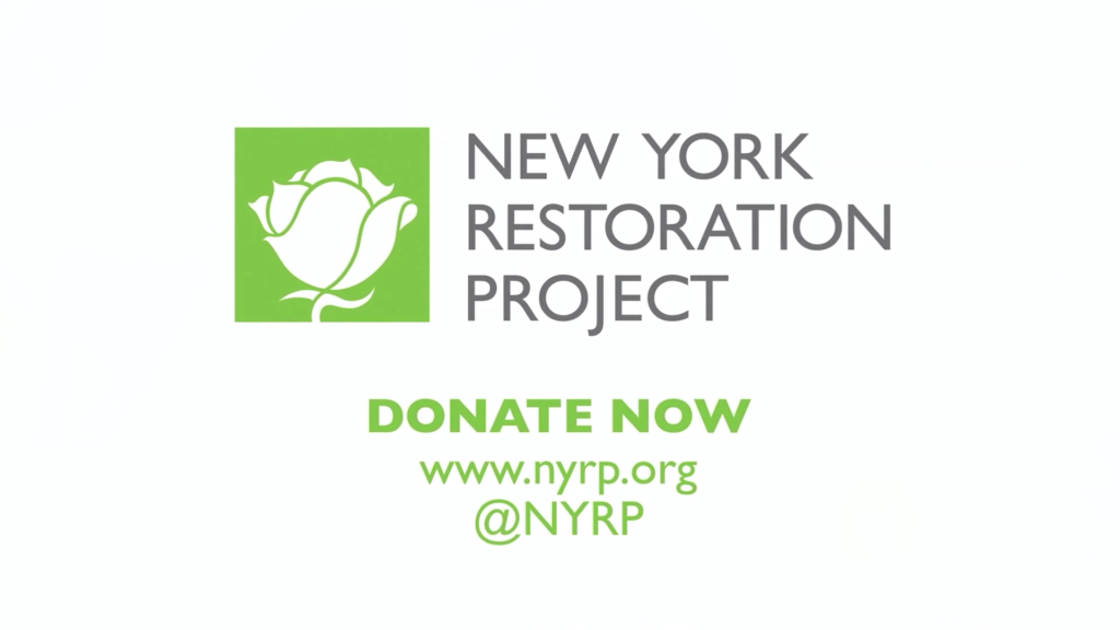 Take part in the action to provide a better living condition in New York City.