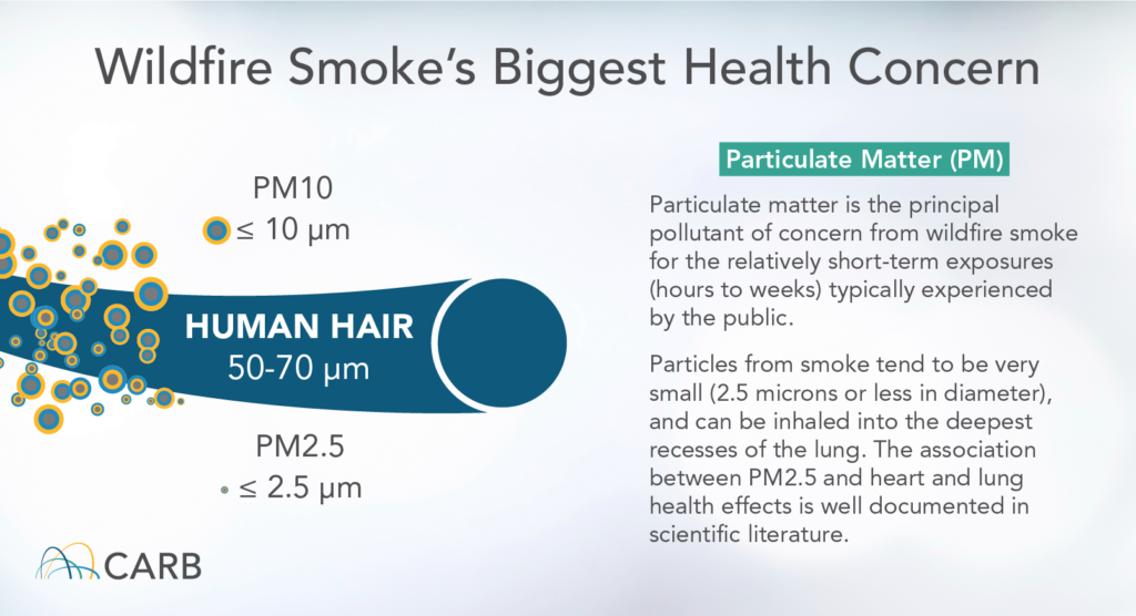 Graph detailing the size and dangers of particulate matter that wildfire smoke creates