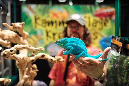 The Reptile Super Show is one of biggest reptile show and sale event in California and one of the best places to get a reptile.