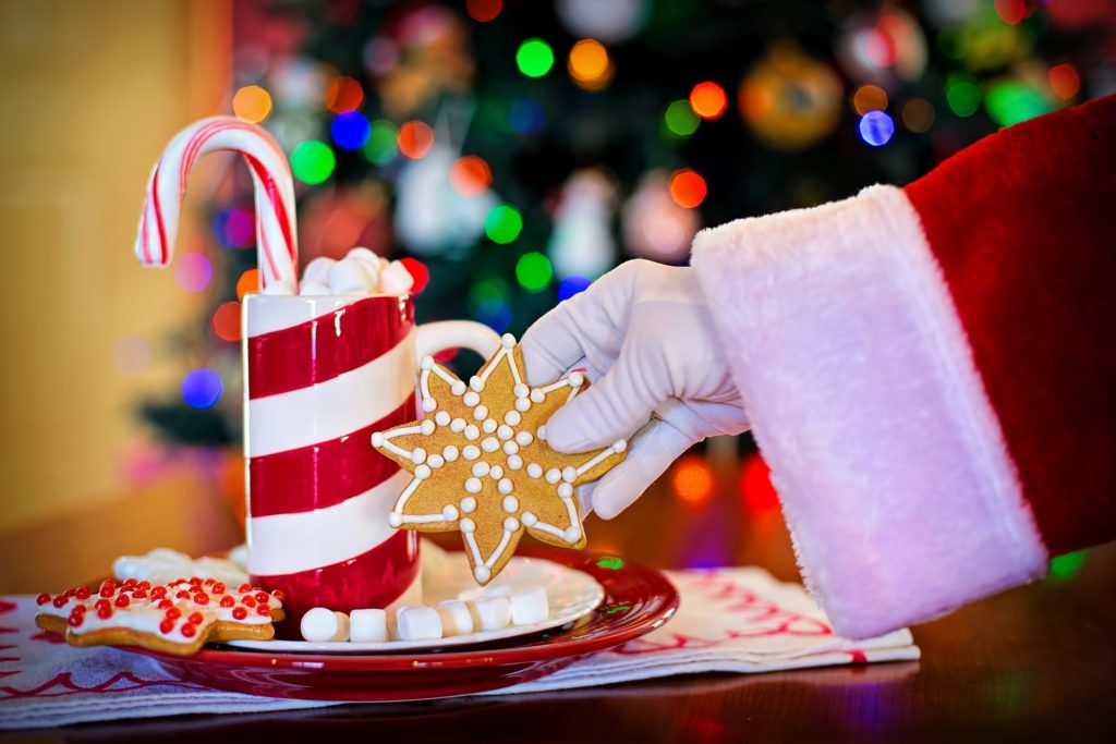 Santa Claus and his Christmas cookies and drink