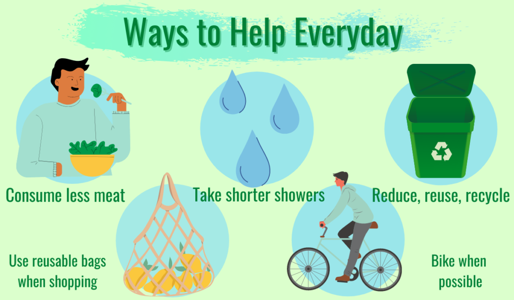 Recommended ways to help reduce one's ecological footprint on a daily basis. Other ways to help include: carpooling, thrift shopping, turn off electronics when not in use, or switch to led light bulbs.
