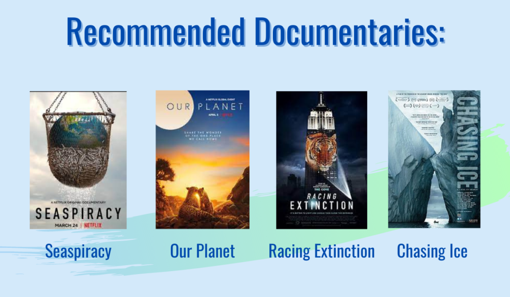 Documentary recommendations made by professor Dr. Royden Hobbs